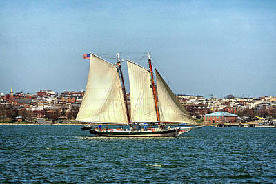 Photograph - Lady Maryland Schooner In Baltimore Harbor by Bill Swartwout Photography