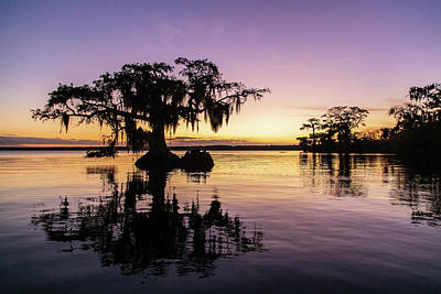 Photograph - Lake Cove At Twilight by Stefan Mazzola