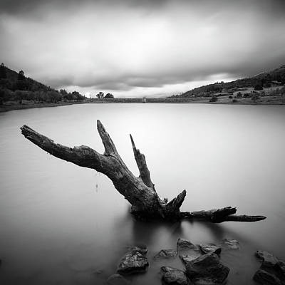 Lake Cuyamaca Stump And Clouds Art Print by William Dunigan