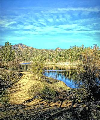 Photograph - Lake Margarita Trees by Floyd Snyder