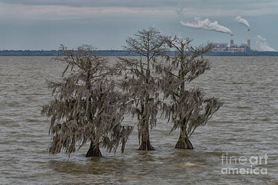 Photograph - Lake Moultrie - Santee Cooper Cross Generating Station by Dale Powell