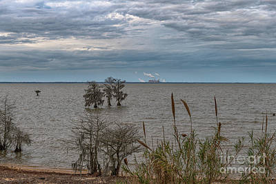 Photograph - Lake Moultrie - Winter Skies by Dale Powell