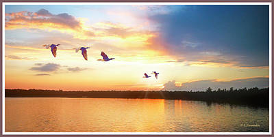 Photograph - Lake Sunset, Cormorants In Flight by A Gurmankin