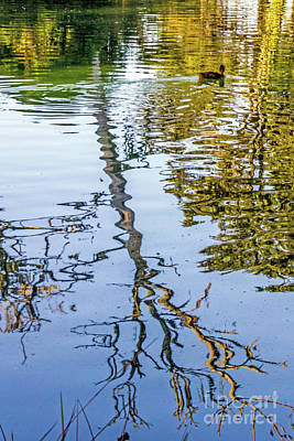 Photograph - Lakeside Reflections II by Kate Brown