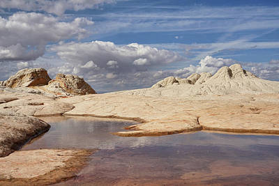 Photograph - Landscape At White Pocket by Leda Robertson