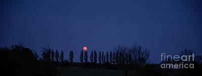 Photograph - Landscape Red Moon Photo 15 by Jenny Potter