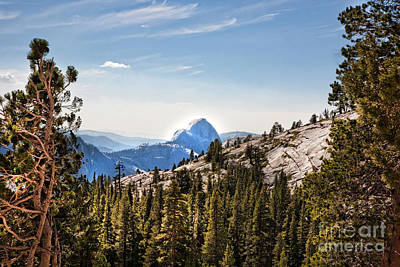 Photograph - Landscape Views Yosemite National Park  by Chuck Kuhn