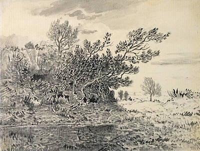Drawing - Landscape With A Pond by Theodore Rousseau