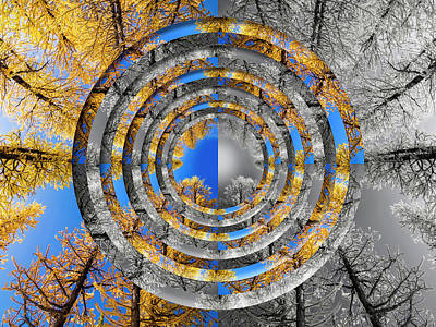 Surrealism Digital Art Rights Managed Images - Larches Color to Black and White Reflection Circles Royalty-Free Image by Pelo Blanco Photo