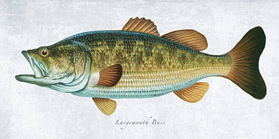 Wall Art - Painting - Largemouth Bass Portrait by Guy Crittenden
