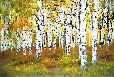 Photograph - Last Dollar Road Aspens - Oil by Gordon Ripley