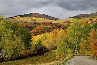 Photograph - Last Dollar Road Fall Scene by Ray Mathis