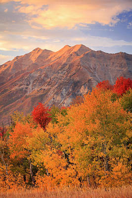 Photograph - Last Light On Timp. by Johnny Adolphson