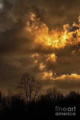 Photograph - Last Sunset Of The Year by Thomas R Fletcher