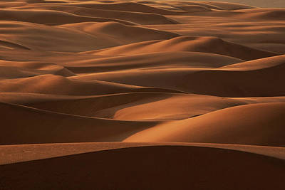 Photograph - Late Afternoon Light On The Sand Dunes by Mint Images - Art Wolfe