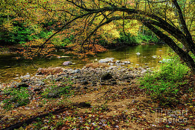 Photograph - Late October On Cranberry River by Thomas R Fletcher