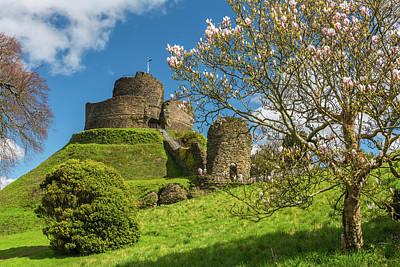 Photograph - Launceston Castle, Cornwall by David Ross