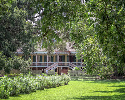 Photograph - Laura Plantation by Susan Rissi Tregoning