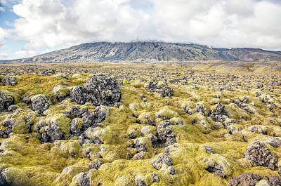 Photograph - Lava Fields Of Iceland by David Letts