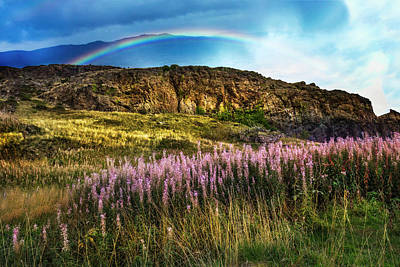 Photograph - Lavendars On The Hills by Debra and Dave Vanderlaan