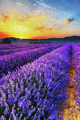Painting - Lavender Fields - 02 by Andrea Mazzocchetti