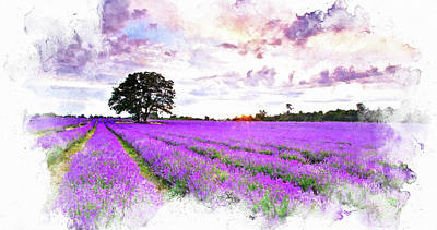 Painting - Lavender Fields - 05 by Andrea Mazzocchetti