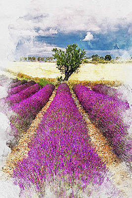 Painting - Lavender Fields - 07 by Andrea Mazzocchetti