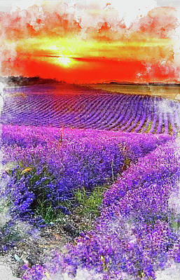 Painting Royalty Free Images - Lavender fields - 11 Royalty-Free Image by AM FineArtPrints