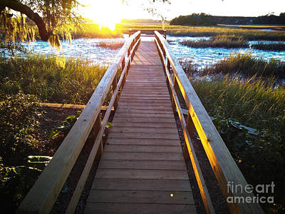 Photograph - Lead Me To The Light by Robert Knight