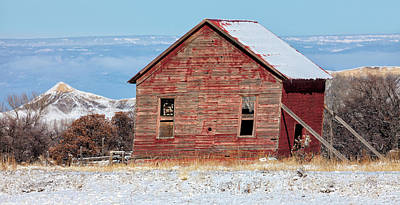 Photograph - Leaning Barn In Winter by Denise Bush