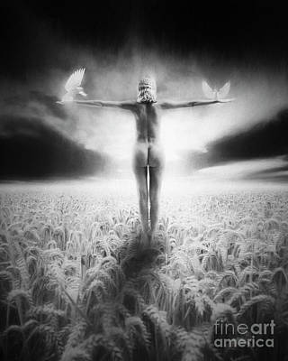 Erik Brede Rights Managed Images - Learning to fly Royalty-Free Image by Erik Brede