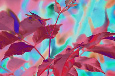 Digital Art - Leaves-1062 Red  by Ajp