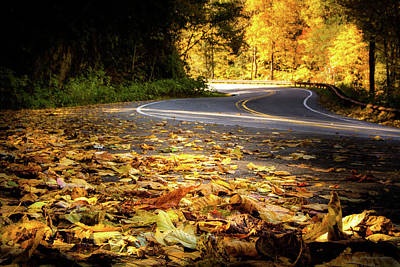 Photograph - Leaves Along The Road by Greg Mimbs