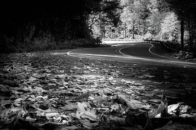 Photograph - Leaves Along The Road In Black And White by Greg Mimbs