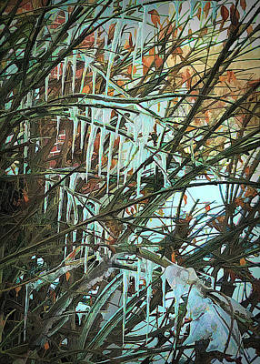 Photograph - Leaves And Icicles by Phyllis Holler