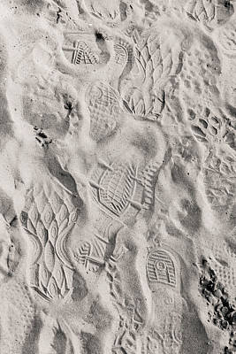 Photograph - Leaving Their Mark by Alex Lapidus