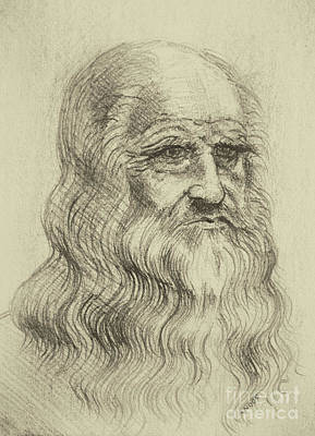 Pastel - Leonardo Da Vinci By George Wood by Karen Adams