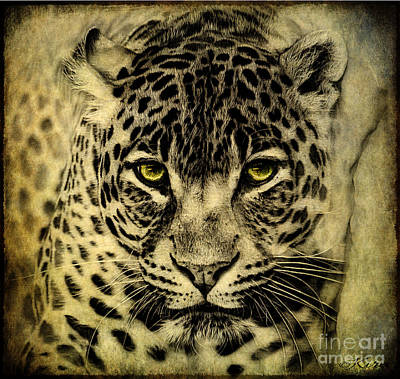 Photograph - Leopard by Kira Bodensted