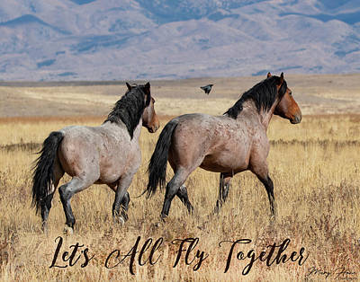 Photograph - Let's All Fly Together by Mary Hone