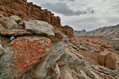 Photograph - Lichen Covered Boulders Along County Road 1028 In Utah by Ray Mathis