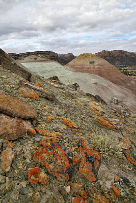Photograph - Lichens On The North Side Of Ancient Volcanoes In Grand Junction Co by Ray Mathis