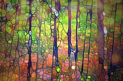 Digital Art - Light Dancing In The Forest by Tara Turner