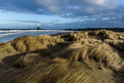 Photograph - Light On The Beach Grass by Robert Potts