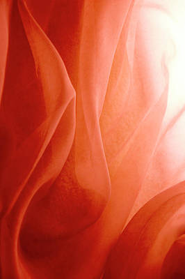 Photograph - Light Shines Through Rose-colored Fabric by Jcarroll-images