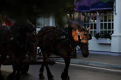 Photograph - Light Stream On Horse As He Pulls Carriage by Dan Friend