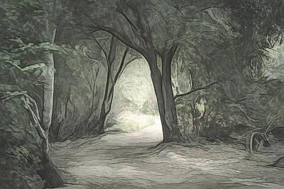 Digital Art - Light Through The Trees Sketch by Alison Frank