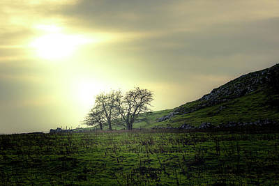 Photograph - Lighting Up The Trees At Thorpe Cloud by Scott Lyons