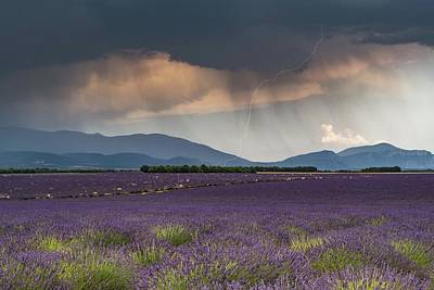 Abstract Stripe Patterns - Lightning over Lavender Field by Rob Hemphill
