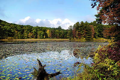 Photograph - Lily Lake Fall Landscape by Christina Rollo