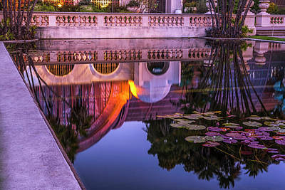 Photograph - Lily Pads And A Botanical Reflection by Joseph S Giacalone